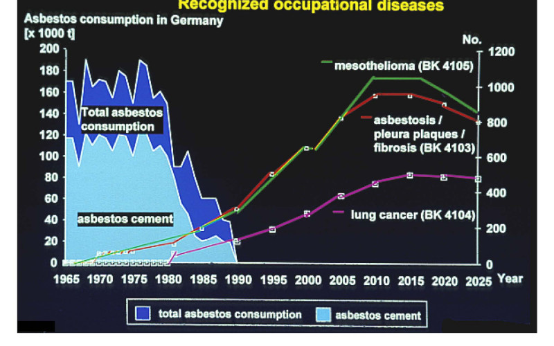 Asbestos consumption and related diseases in Germany